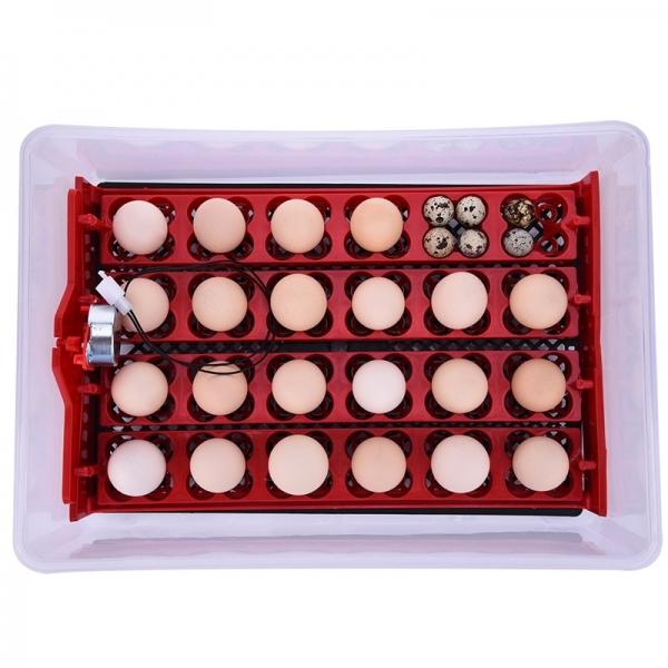 Инкубатор на 24 яйца ECO-24 (220/12 В)